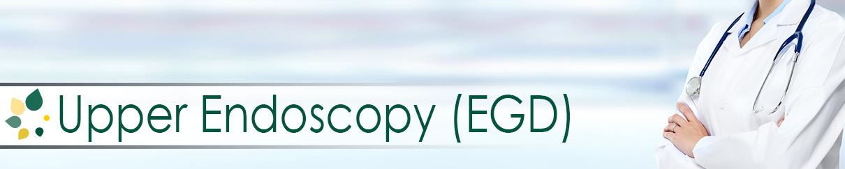 Upper Endoscopy EGD Procedures at Regional Surgicenter of Moline IL Quad Cities